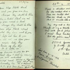 Double page of Nurse Harevy's autograph album showing handwritten entries by injured soldiers. | Courtesy of the Imperial War Museum