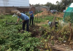 Recreating a First World War allotment