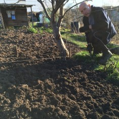 A view of the newly dug over allotment plot | Southlands Road Allotment and Gardens Association